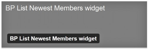 BP List Newest Members Widget