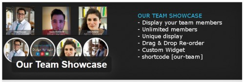 Our Team Showcase